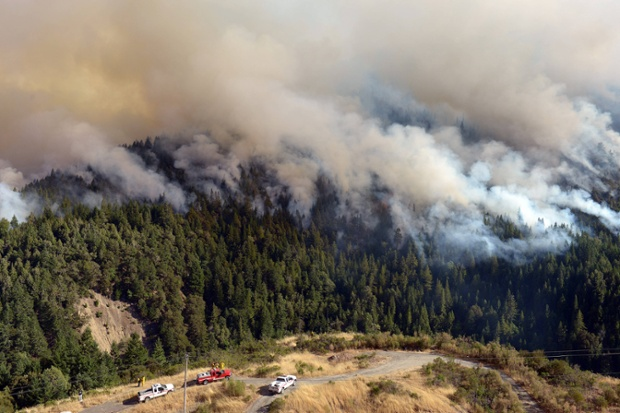 Wildfire in California, America - 13 Aug 2014