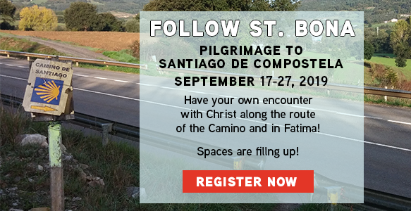 https://www.tektonministries.org/catholic-pilgrimages/favorite-destinations/camino-de-santiago/