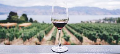 Wines & Shrines
